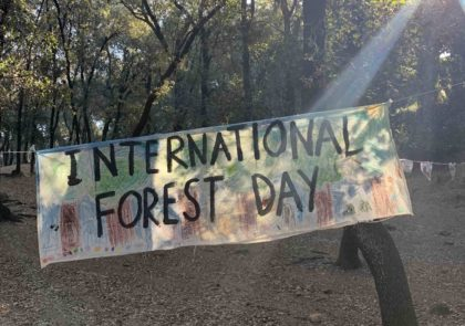 International Day of the Forest